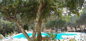 Santa Comba Dao, kamer vlakbij zwembad